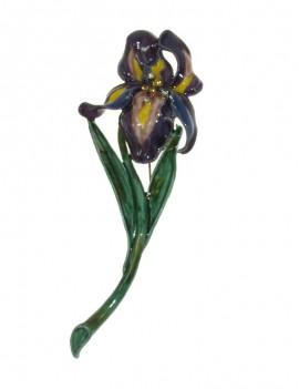 Broche iris